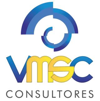 Consultores VMSC